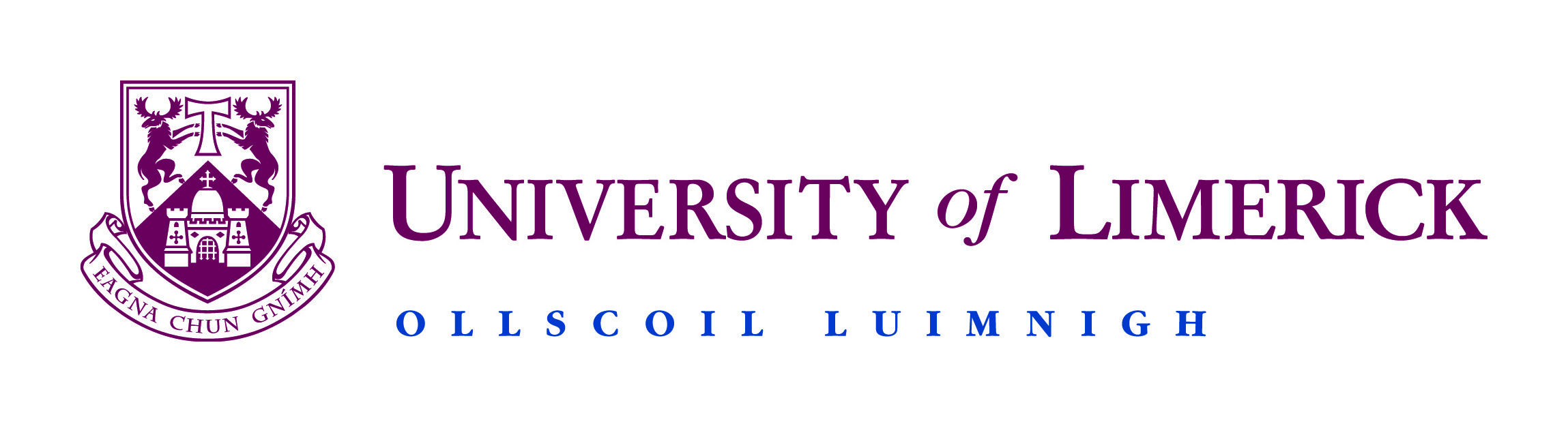 Logo for the University of Limerick